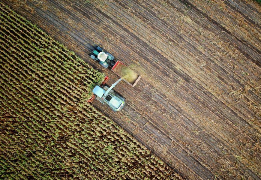 Zwei Landmaschinen bei der Ernte auf dem Feld, aus der Luft steil nach unten fotografiert.